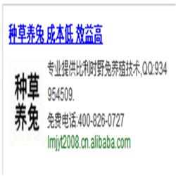中华黑豚鼠养殖视频